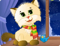 Cuddles The Kitten