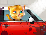 Ginger Car Wash