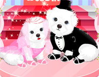 Lovely Puppies' Wedding