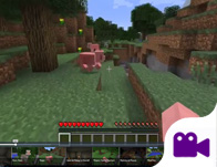 Minecraft Survive and Thrive
