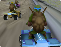 Ninja Teenage Turtle Driving